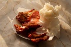 O arroz fritado da pasta tailandesa do pimentão, o ovo cozido e o camarão doce na placa branca e o espaço para escrevem o fraseio fotografia de stock