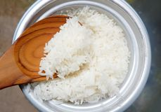 O arroz que cozinha no fogão de arroz elétrico com vapor ferveu o potenciômetro com a concha de madeira da colher fotografia de stock royalty free