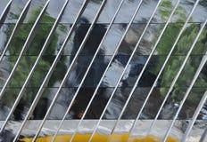 O artificat da rua com reflexão olha como a pintura a óleo Fotografia de Stock