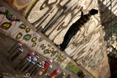 O artista novo dos grafittis pulveriza a imagem na parede Imagem de Stock
