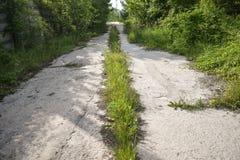 O asfalto abandonado rachou a estrada com plantas cobertos de vegetação e grama no meio do nada em alguma cidade do fantasma O co fotografia de stock