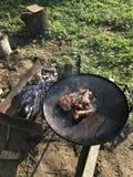 O assado a carne do cordeiro encontra-se na grade O fogo está queimando-se, os carvões está ardendo sem chama foto de stock royalty free
