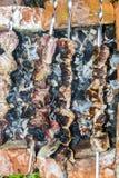 O assado do no espeto no carvão de pedra do forno dos espetos queimou-se Imagem de Stock