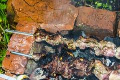O assado do no espeto no carvão de pedra do forno dos espetos queimou-se Fotografia de Stock