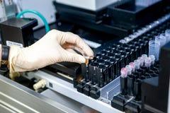 O assistente de laboratório coloca a amostra no instrumento para a análise, close-up imagens de stock