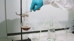 O assistente de laboratório da opinião da parte traseira derrama o líquido marrom na garrafa video estoque