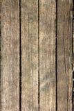 O assoalho de madeira Imagens de Stock