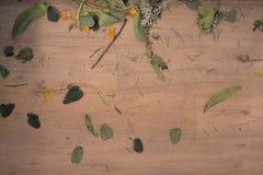 O assoalho, sucata das sobras do florista, corte sae de flores Fotos de Stock