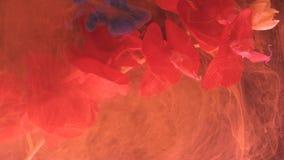 O ater abstrato líquido coral de vida do inw das manchas envolve as nuvens maçantes da flor video estoque