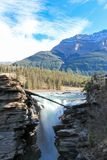 O athabasca pitoresco cai rio Canadá Fotos de Stock Royalty Free