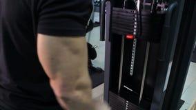 O atleta bombeia os músculos no simulador levantando o peso grande acima Close-up masculino do tríceps filme