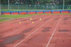 O atletismo artificial com grama verde combinou com a grama artificial fotografia de stock