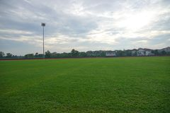O atletismo artificial com grama verde combinou com a grama artificial imagens de stock
