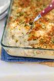 O atum, o alho-porro, Mornay e a massa alaranjada cozem (macarrão e o queijo) Foto de Stock Royalty Free