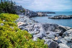 O au bonito Haut de Duck Harbor Isle no parque nacional do Acadia, Maine imagem de stock royalty free