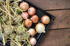 O aumento nos preços de cebolas secas, aumento excessivo nos preços de cebolas secas, Fotografia de Stock