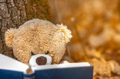 o avô senta-se nas folhas de outono caídas perto de uma árvore e lê-se um livro imagem de stock