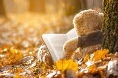 o avô senta-se para trás nas folhas de outono caídas perto de uma árvore e lê-se um livro foto de stock royalty free