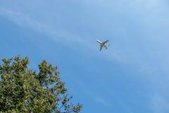 O avião do ` s do homem de negócios está voando no céu azul fotos de stock royalty free