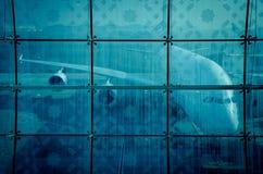 O avião prepara-se para a luta Fotografia de Stock