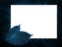 O azul sae do fundo Foto de Stock Royalty Free