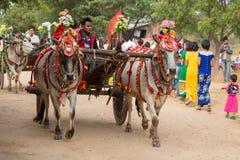 O búfalo decorado e os povos locais que participaram na doação canalizaram a cerimônia em Bagan Myanmar, Burma Fotografia de Stock