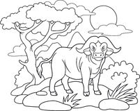 O búfalo foi para uma caminhada ilustração royalty free