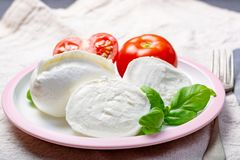 O búfalo italiano branco macio da mussarela do queijo serviu com tomate fresco e as folhas verdes da manjericão foto de stock