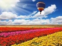 O balão grande voa Imagem de Stock