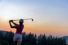 O balanço asiático da batida do jogador de golfe da mulher disparou na bola de golfe no por do sol verde do clube verde no tempo  Imagem de Stock Royalty Free