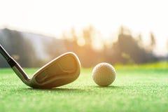 O balanço asiático da batida do jogador de golfe da mulher disparou na bola de golfe no tempo eventing do por do sol verde Fotos de Stock Royalty Free