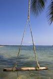 O balanço que pendura na árvore de coco Imagem de Stock Royalty Free