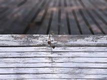 O bambu branco do quadro completo cola o assoalho de Around Wooden Planks da cerca imagem de stock