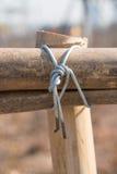 O bambu junta-se ao ponto Fotografia de Stock