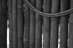 O bambu preto e branco é feito à parede da sala Fotos de Stock Royalty Free