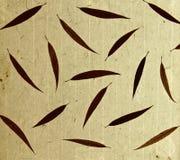 o bambu sae do papel Foto de Stock Royalty Free