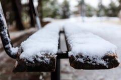 O banco de madeira coberto com a neve em um parque espera a companhia Feche acima, fundo do borrão, bandeira Fotografia de Stock Royalty Free