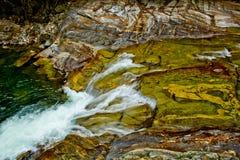 O banco de rio colorido Fotografia de Stock