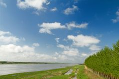 O banco direito do rio Fotografia de Stock Royalty Free