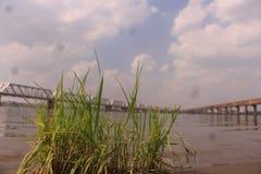 O banco do narmada do rio Fotos de Stock Royalty Free