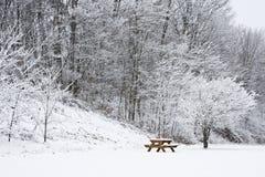 O banco do piquenique sob a neve cobriu a árvore Imagem de Stock Royalty Free
