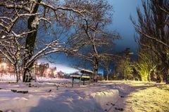O banco e as silhuetas de um par no parque nevado na noite iluminam-se Fotografia de Stock Royalty Free
