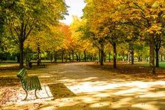 Tiergarten Berlim Foto de Stock Royalty Free