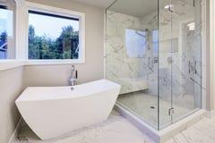 O banheiro lustroso caracteriza a banheira autônoma Foto de Stock