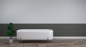 O banho branco está nos projetos interiores da casa do fundo da sala vazia de madeira limpa do assoalho, mercadorias sanitários d ilustração royalty free
