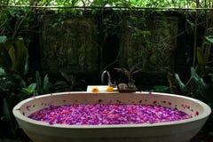 O banho exterior com as flores cor-de-rosa tropicais para relaxa Termas, orgânico imagem de stock
