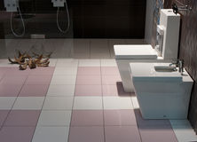 O banho, interior, decora Fotos de Stock Royalty Free