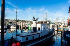 O barco de pesca comercial entrou no terminal do ` s do pescador em Seattle Washington imagem de stock