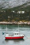 O barco e a casa de pesca no mar da ilha da floresta ajardinam em Noruega imagens de stock royalty free