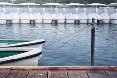 O barco a remos branco amarrou perto da costa no lago Fotos de Stock